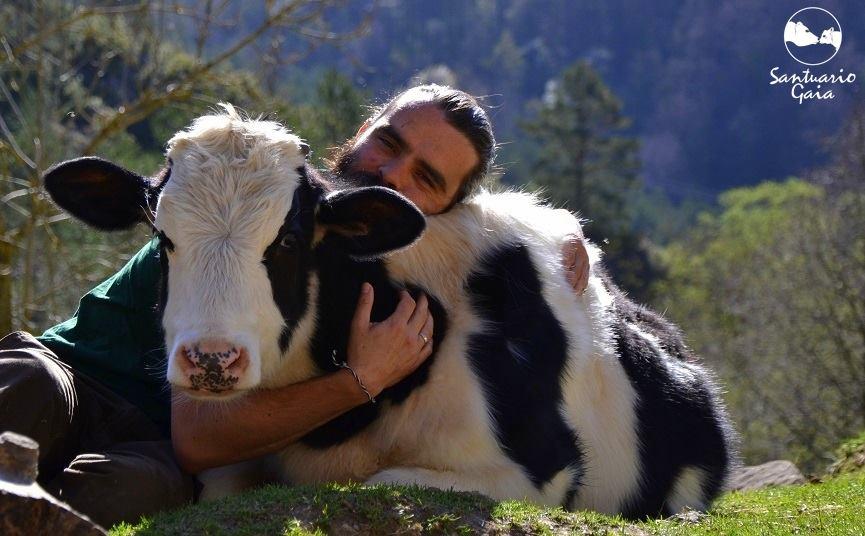 Santuraio Gaia, el rincón de solín, la covacha animalera